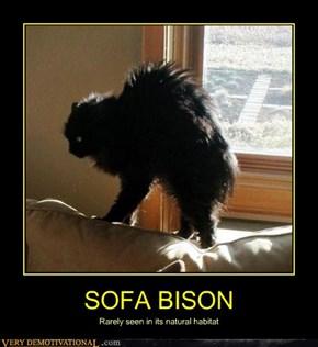 SOFA BISON