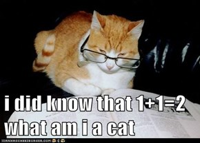 i did know that 1+1=2  what am i a cat
