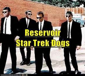 Reservoir                                         Star Trek Dogs
