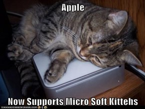 Apple  Now Supports Micro Soft Kittehs