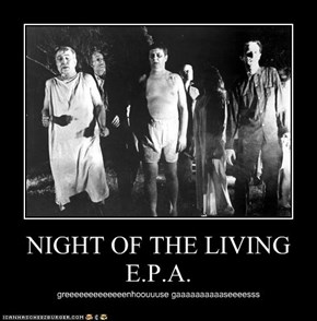 NIGHT OF THE LIVING E.P.A.