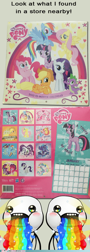 MLP Calendar 2013