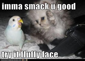 imma smack u good  try it fluffy face