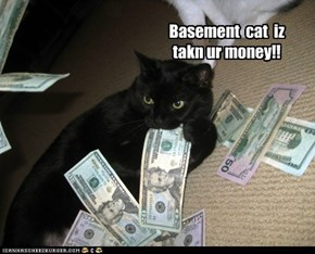 Basement  cat  iz takn ur money!!