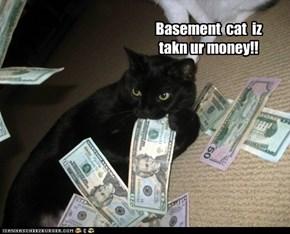 Basement  cat  iz takn ur money!!