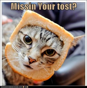Missin Your tost?