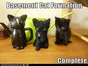 Basement Cat Formation  Complete