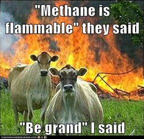"""Methane is flammable"" they said  ""Be grand"" I said"