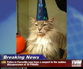 Breaking News - Police in Purrsville now have a suspect in the sudden dissapearance of 30 Pitbulls