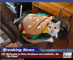 "Breaking News - McDonalds in China introduces new sandwich.. the ""Mc Kitten"""