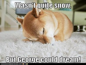 Wasn't quite snow,   But George could dream!