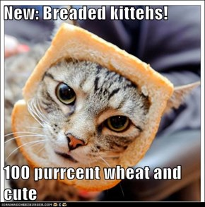New: Breaded kittehs!  100 purrcent wheat and cute