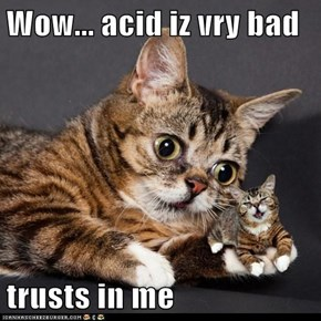 Wow... acid iz vry bad  trusts in me