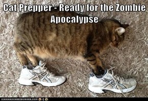 Cat Prepper - Ready for the Zombie Apocalypse
