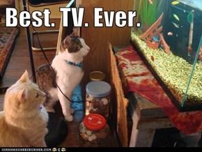 Best. TV. Ever.