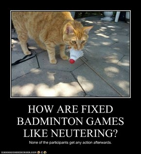 HOW ARE FIXED BADMINTON GAMES LIKE NEUTERING?