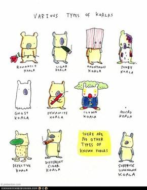 Various Types of Koalas