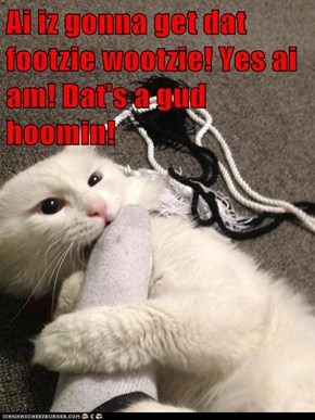 Ai iz gonna get dat footzie wootzie! Yes ai am! Dat's a gud hoomin!