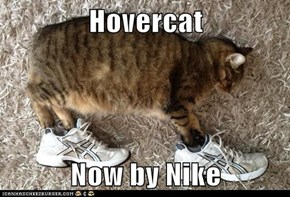 Hovercat  Now by Nike