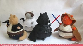 Star Wars Pincushion Cats