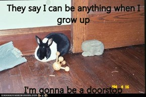 They say I can be anything when I grow up  I'm gonna be a doorstop