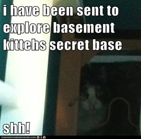 i have been sent to explore basement kittehs secret base  shh!