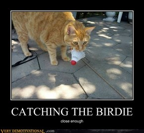 CATCHING THE BIRDIE