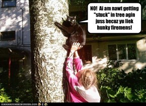 "NO!  Ai am nawt getting ""stuck"" in tree agin juss becuz yu liek hunky firemens!"