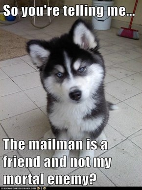 So you're telling me...  The mailman is a friend and not my mortal enemy?