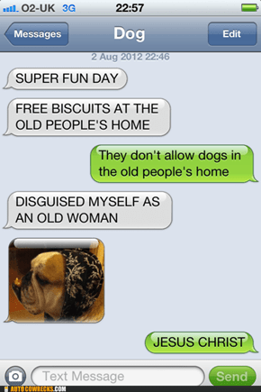 Texts from Dog: No One Will Know the Difference