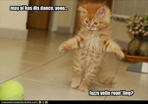 may ai has dis dance, yooo...                                                                                                       fuzzy yello roun' fing?
