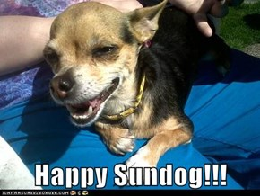 Happy Sundog!!!