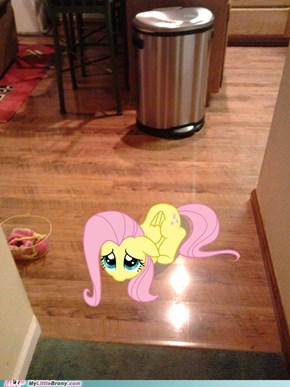 What's wrong Fluttershy?