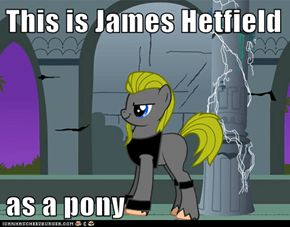 This is James Hetfield   as a pony