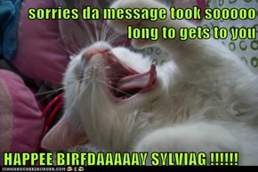 sorries da message took sooooo long to gets to you  HAPPEE BIRFDAAAAAY SYLVIAG !!!!!!