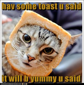 hav some toast u said  it will b yummy u said