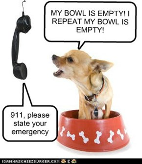 Food Emergency