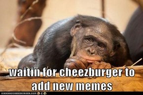 waitin for cheezburger to add new memes