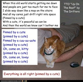 """Cat Therapy"" (TTO ""Up On The Roof"" by The Drifters)"