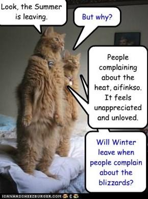 Seasonal felines