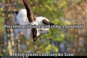 Prevailing tailwinds will reduce our flight time. Thank you for choosing Air Siam.