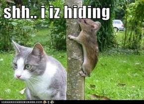 shh.. i iz hiding