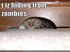 i iz hiding from zombies