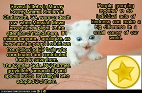 Gold Star Kitty awared to the ComfeeSofa and others for rescuing kittehs from death row!