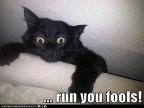 ... run you fools!