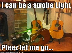 I can be a strobe Light  Pleez let me go...