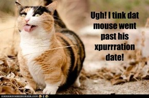 Ugh! I tink dat mouse went past his xpurrration date!