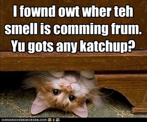 I fownd owt wher teh smell is comming frum.  Yu gots any katchup?