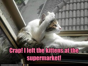 Crap! I left the kittens at the supermarket!