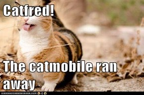 Catfred!  The catmobile ran away